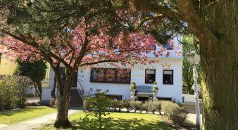 Immobilie Timmendorfer-Strand - Vollmöblierte geräumige Einzimmer-Ferienwohnung in Bestlage - auch als Dauerwohnung nutzbar